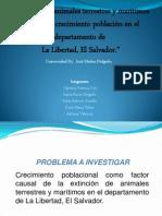 metodos presentacion[1]
