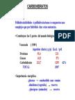 carbohidratos_ gelatinizacion