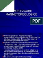 AMORTIZOARE MAGNETOREOLOGICE
