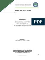 Parafinas Asfaltenos y Escamas
