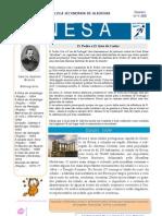 Nesa2008-02