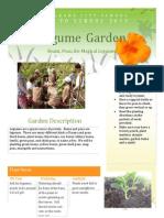 legume garden2013
