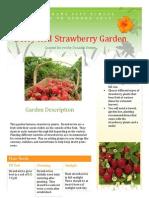 stawberry garden