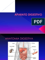 Aparato Digestivo - Anato -Fisiologia-nutri