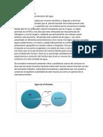Borrador de Protocolo de Investigacion Hipotesis Delimitacion Del Tema y Antecedentes