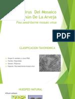 Virus Del Mosaico(ARVEJA)