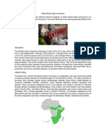 West African black rhinoceros.pdf