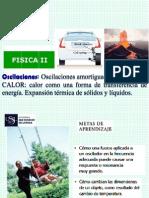 2013_1__F_II_s_3_oscilaciones__amortigadas_forzadas_y_calor.pdf