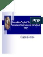 7_sistemul de Management Al Firmei