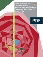Estudio de Causas de at 2010 Graves Mortales