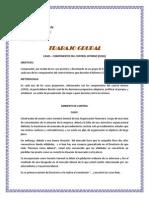 Ejercicio COSO I Componentes (1)