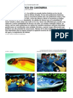01_GR_02_salmon_atlantico.pdf