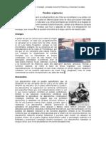 52239964 Guia de Los Pueblos Originarios de Chile