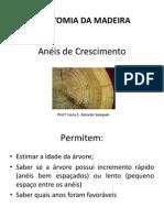 Aula 4 - Anatomia Da Madeira - Anéis de Crescimento 1p