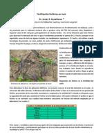 Formulación de La Fertilización Fosforada en El Maíz