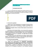 RESUMO Administração Pública.docx