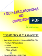 03 AD Tooth's