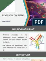 UNID T5 Inmunoglobulinas.pptx
