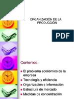 Organizacion Produccion Mercados Eco100a 2008