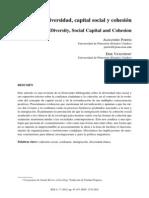 Diversidad Capital Social y Cohesion