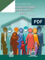 Encuesta Nacional de Empleo y Seguridad Social 2013