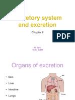 Excretory System and Excretion
