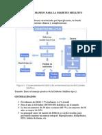 Protocolo de Manejo de La Diabetes Mellitus 2