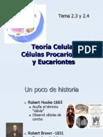21-teora-celulareupro-1220223770793412-8