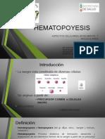 Hematopoyesis 25-04-14