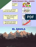 1 Decisión El Aguila