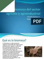 biomasadelsectoragrcolayagroindustrial-120716104133-phpapp01