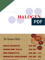 Halogen Power Point