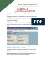 Manual de Paramentrización WM by Mundosap