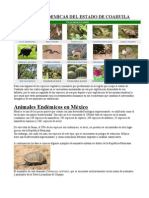 Especies Endemicas Del Estado de Coahuila
