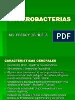 Enterobacterias Practica