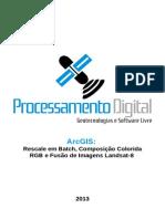20130820 ArcGIS10 Rescale RGB Composite PanSharpening