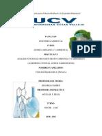 trabajo de laboratorio 3 IMPRIMIR YUDI.docx