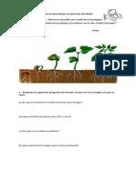 Guía de Aprendizaje Comprensión del Medio 3°B