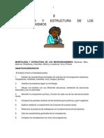 Morfologia y Estructura de Los Microorganismos