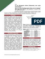 Novo Flavonol Obtido de Pterogyne Nitens (Fabaceae) Com Ação Inibitória Sobre Mieloperoxidase