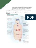 Endocrine Notes #1