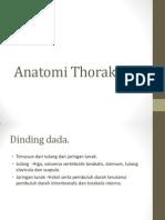 Anatomi Thoraks