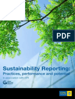Sustainability Reporting Practice Performance Potential