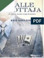 Calle Erottaja Hamalainen