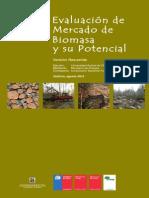 Resumen Ejecutivo Proyecto Bioenergia v2