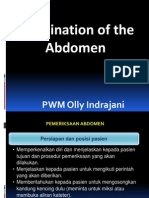 Dr. Olly Examination of the Abdomen