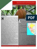 Bpa-paloblancopiura - Buenas Practicas