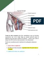 Artera Femurala Si Teste de Efort