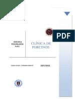 Informe CERDO