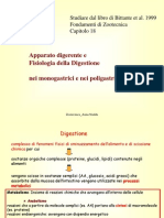 3.Digestione Monogastrici Ruminanti2014